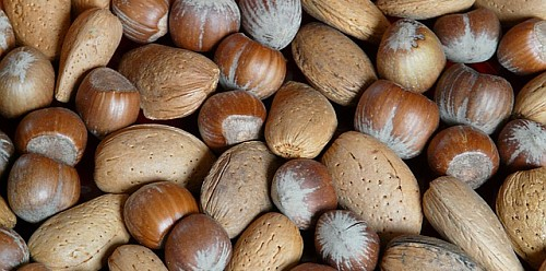 - List of Common Food Allergies -