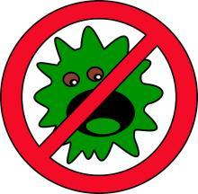 List of Common Food Allergies 1