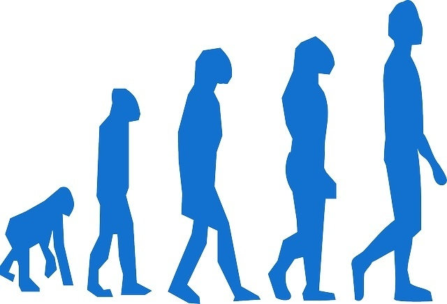 Can I Lose Weight with the Paleo Diet - Evolution