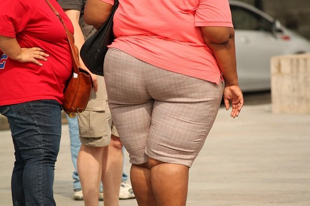 Can Fat And Beauty Go Together