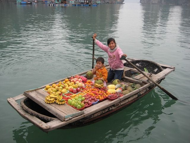 Fruit Seller Ha Long Bay, Vietnam