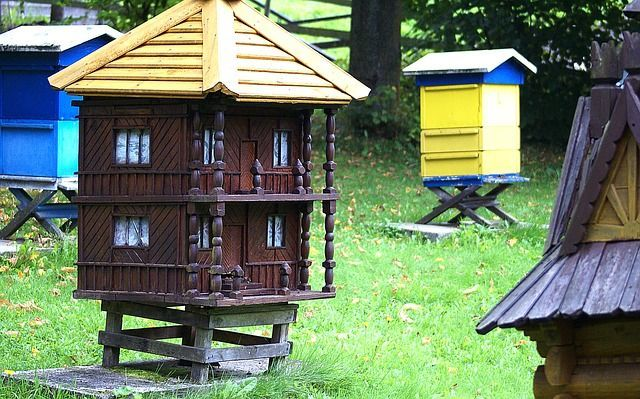 Can Honey Be Used to Treat Herpes Bee Cottage