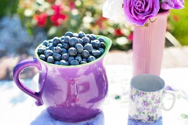 Is Complete Nutrition Important - blueberries
